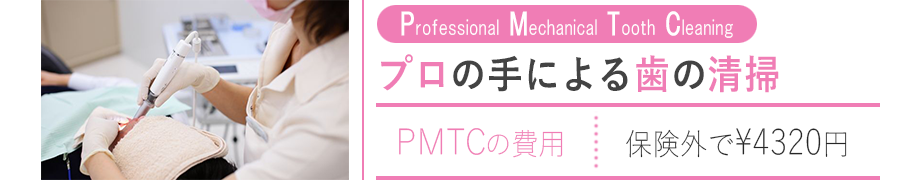 page-Pmtc3